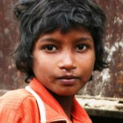 Noord West India (39)