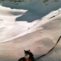 Austria - Snow (5)