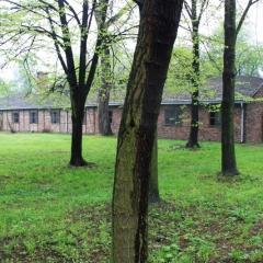 Poland - Auschwitz (1)