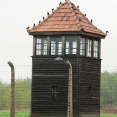 Poland - Auschwitz (14)