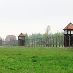 Poland - Auschwitz (17)
