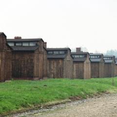 Poland - Auschwitz (18)