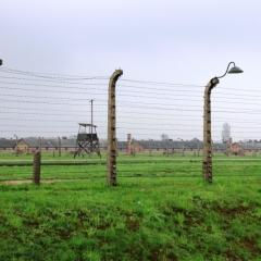 Poland - Auschwitz (29)