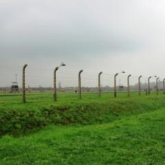 Poland - Auschwitz (30)