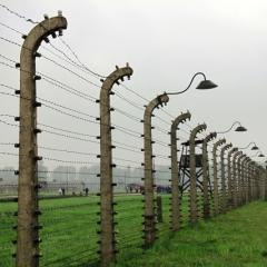 Poland - Auschwitz (31)