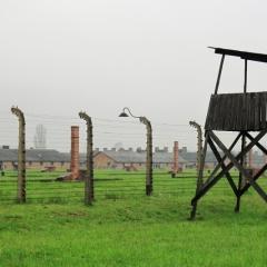 Poland - Auschwitz (35)