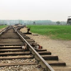 Poland - Auschwitz (4)