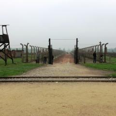 Poland - Auschwitz (43)