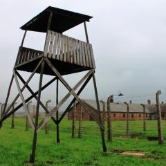 Poland - Auschwitz (54)