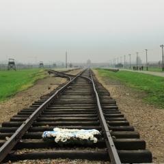 Poland - Auschwitz (62)