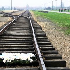 Poland - Auschwitz (63)