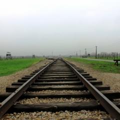 Poland - Auschwitz (66)