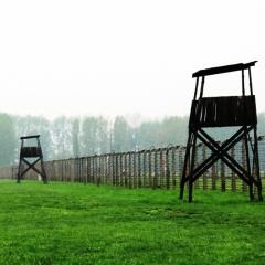Poland - Auschwitz (7)