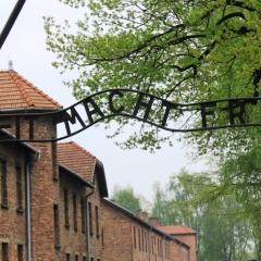 Poland - Auschwitz (74)