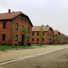 Poland - Auschwitz (76)
