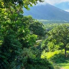 Saint-Kitts-Nevis-19