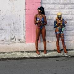 Saint-Kitts-Nevis-33