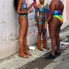 Saint-Kitts-Nevis-35