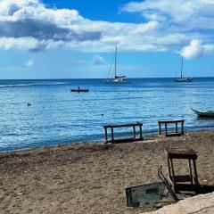 Saint-Kitts-Nevis-38