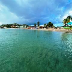 Saint-Kitts-Nevis-43