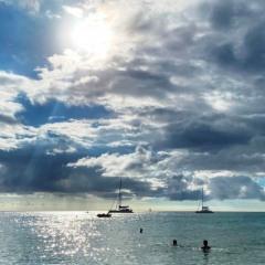 Saint-Kitts-Nevis-47
