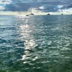 Saint-Kitts-Nevis-49