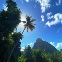 Saint-Lucia-1
