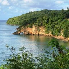 Saint-Lucia-14