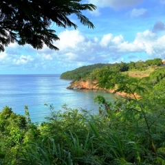 Saint-Lucia-16