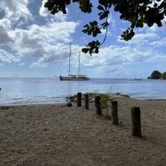 Saint-Lucia-27
