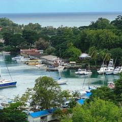 Saint-Lucia-29