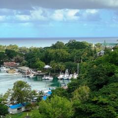 Saint-Lucia-32
