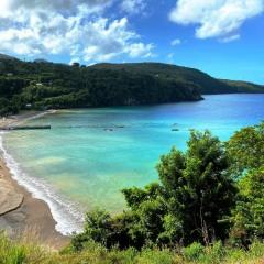 Saint-Lucia-38