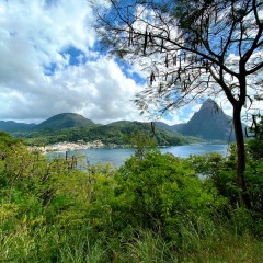 Saint-Lucia-44