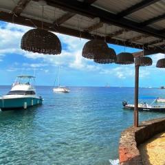 Saint-Lucia-48