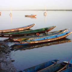 Senegal (1)