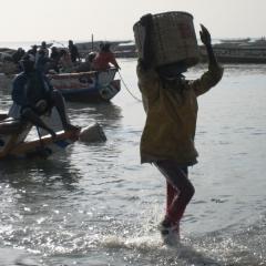 Senegal (19)