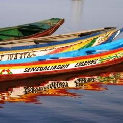 Senegal (3)