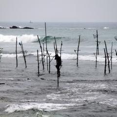 Sri Lanka (34)