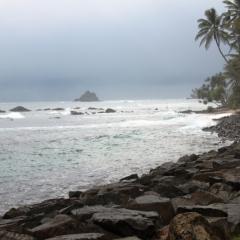 Sri Lanka (38)