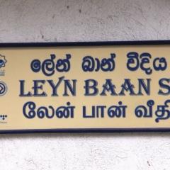 Sri Lanka (46)