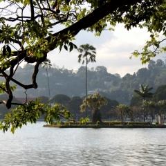 Sri Lanka (48)