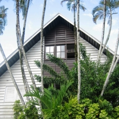 Suriname (25)