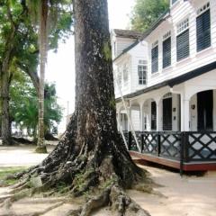 Suriname (28)
