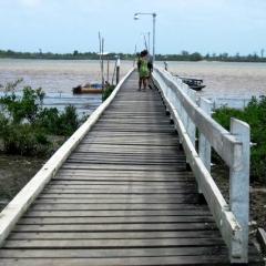 Suriname (33)
