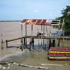 Suriname (39)