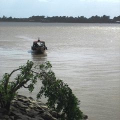 Suriname (40)