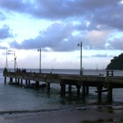 Tobago - Charlotteville (11)