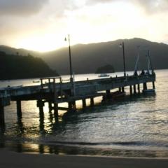 Tobago - Charlotteville (12)