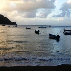 Tobago - Charlotteville (13)